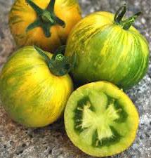 Grenn Zebra Tomato