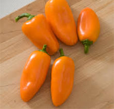 orange lunchbox sweet pepper