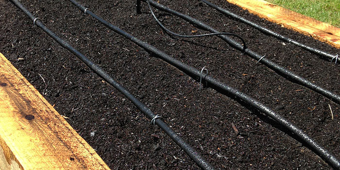 Example of garden drip-line irrigation