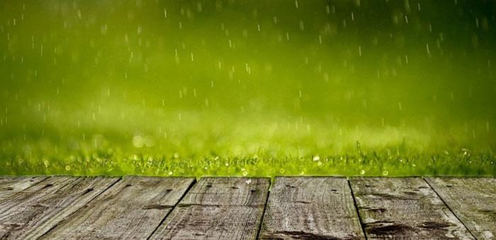 Rain on deck