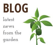 Check out the latest news from our garden!