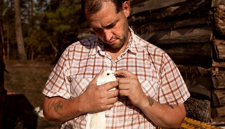 U.S. Army veteran Alex Sutton cradles a show pigeon on his 43 acre farm in rural Moore County, North Carolina.