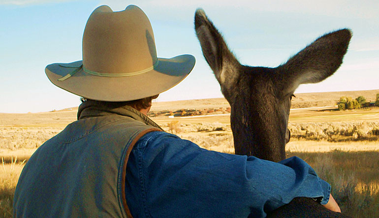 Joe Hutto with a mule deer.