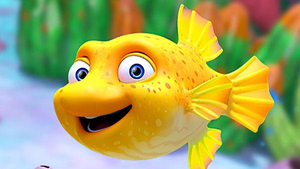 Splash, a yellow fusilier fish.
