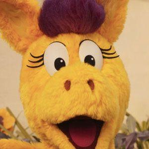 Donkey Hodie